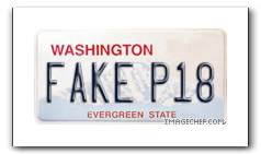 fake license plate.jpg