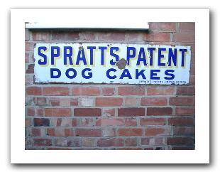 dog-cakes.jpg